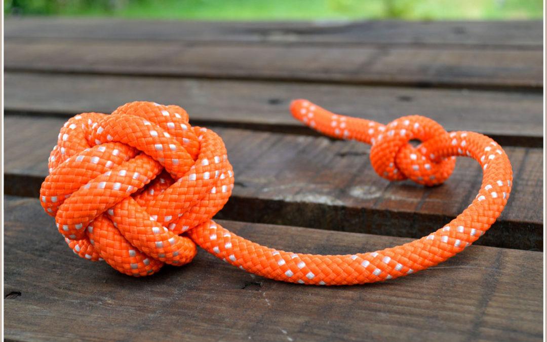 [Werbung] Ropes Upcycled: Hundezubehör aus gebrauchten Kletterseilen im Test