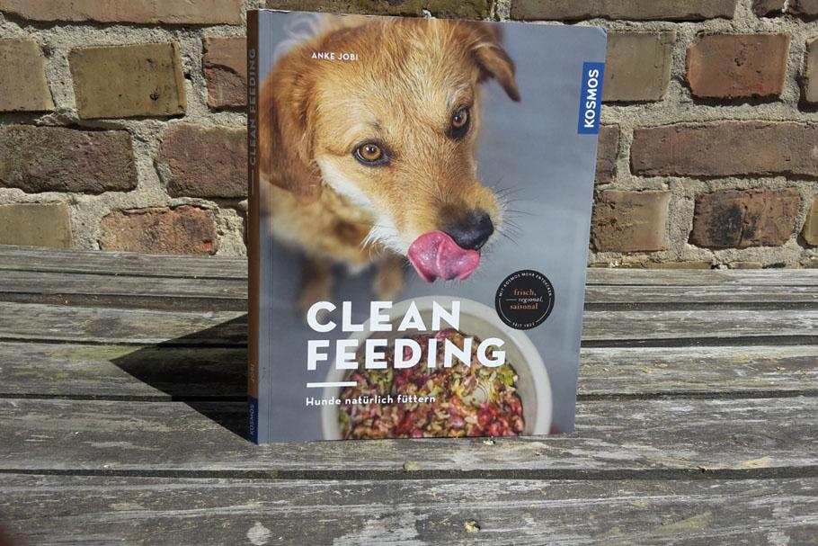 Clean Feeding: Ankes Jobis Blick in den Hundenapf